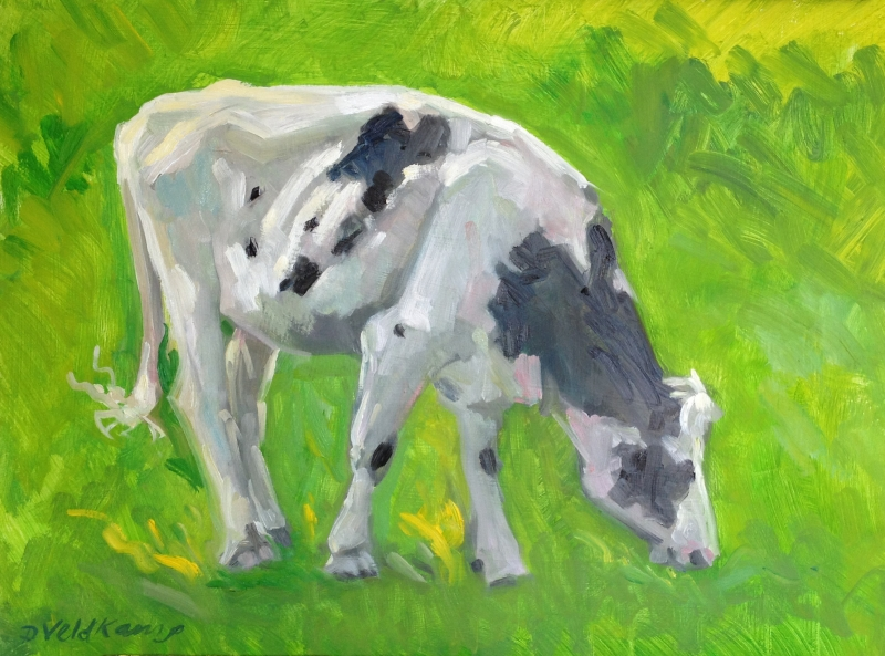 Beginning Sketch of Cow in Pasture, 18 x 24 inches, oil on panel