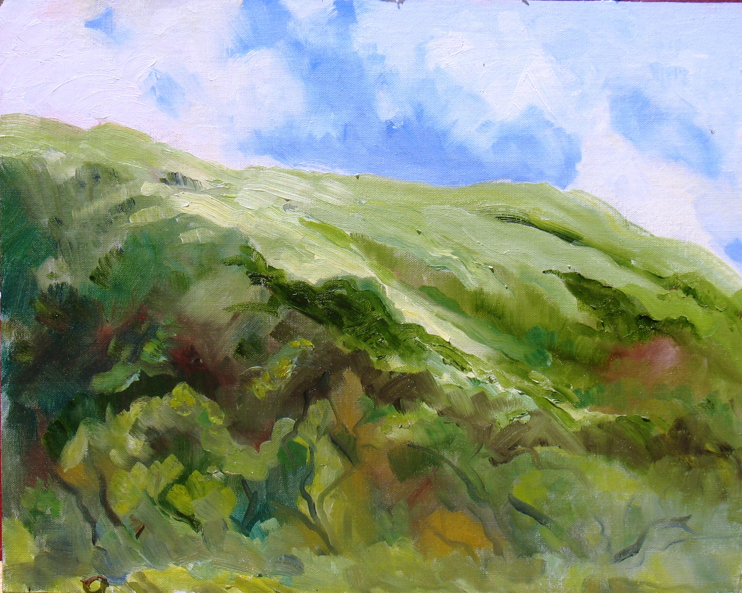 Cloud Breezes on Spring day, 16 x 20 inches, oil on panel