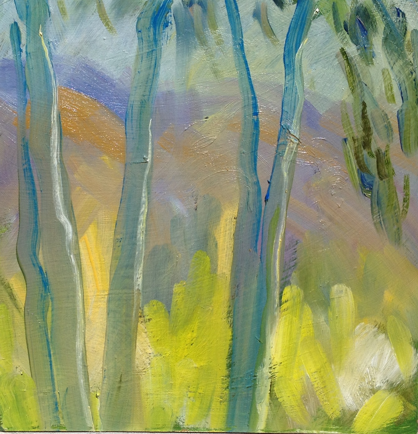 Eucalyptus at Ranch, 10 x 10 inches