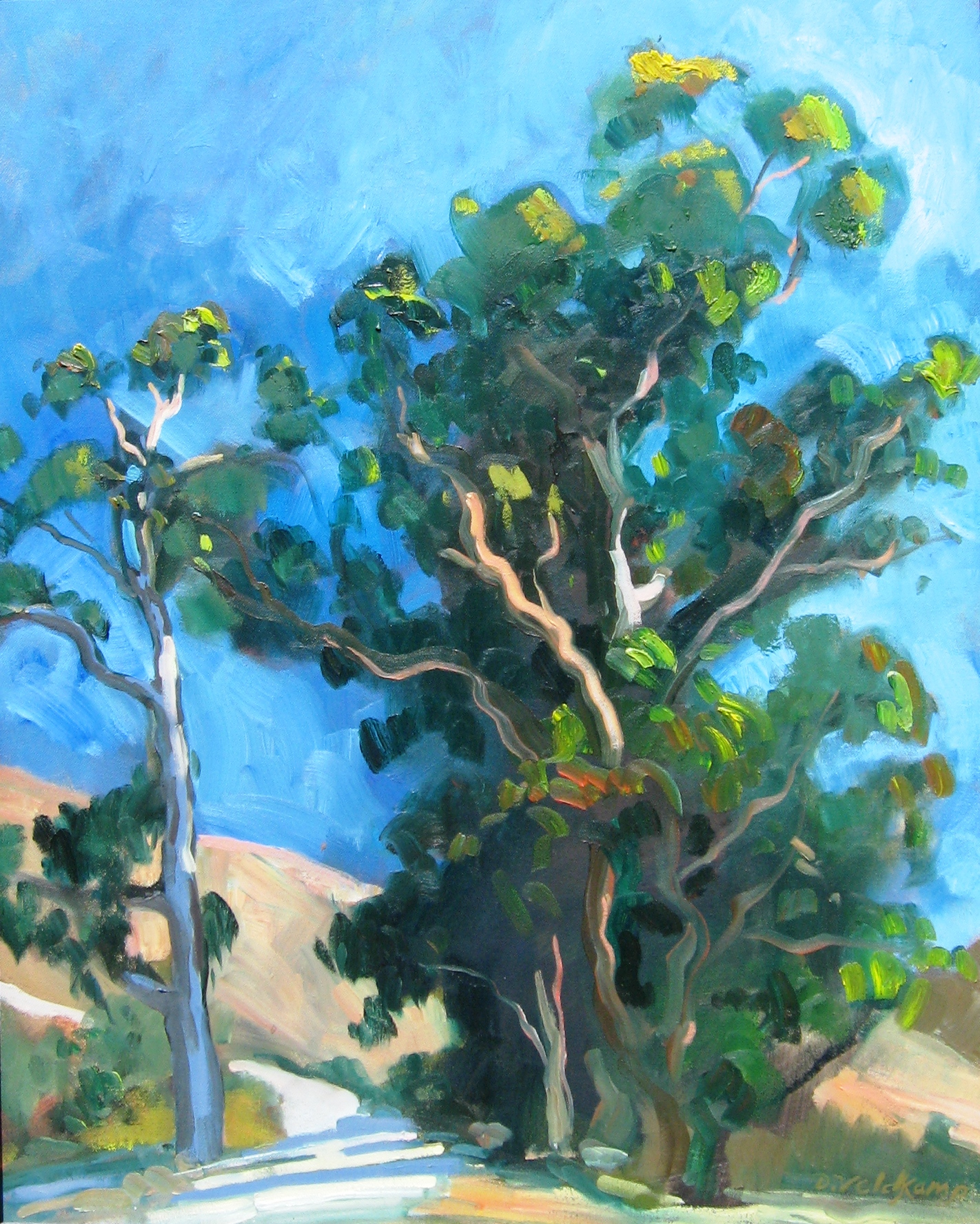 Santa Rosa Creek Eucalyptus, oil on canvas, 30 x 24 inches - UNAVAILABLE
