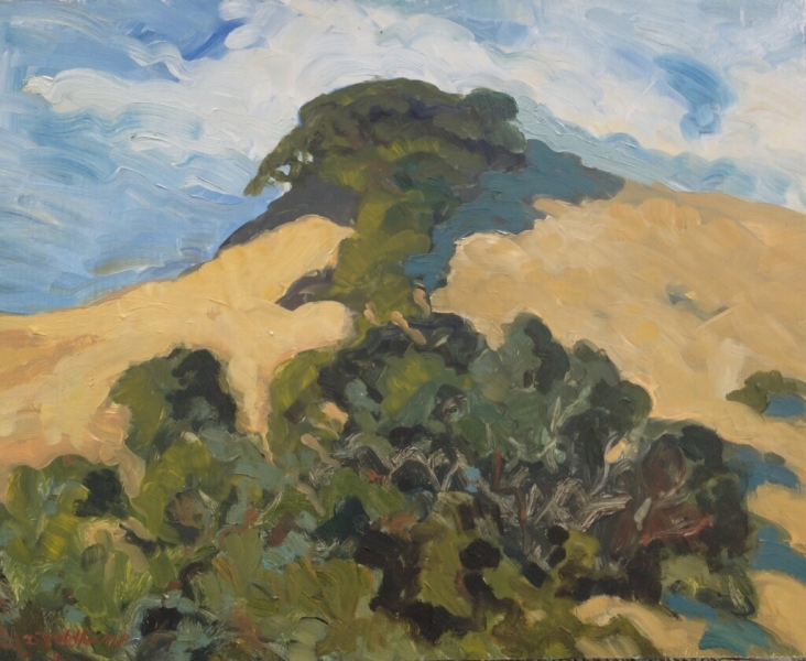 Tree on top of hill, 16 x 20op