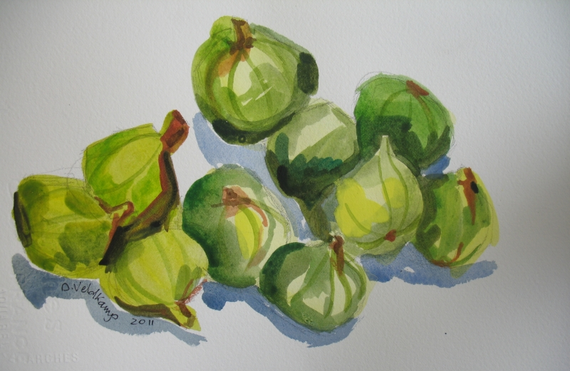 Figs, watercolor, 7.5 x 11, on paper, 2011