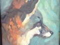 Catalina Island Fox, 9 x 9 inches, oil on panel