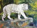 Tiger - White Siberian, 20 x 24, oil on panel, 2011