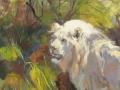 White Lion, 20 x 24, oil on panel