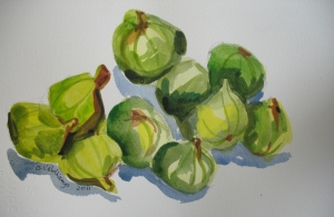 Figs, watercolor, 7.5 x 11, on paper, 2011.jpg