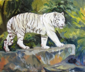 Tiger- white Siberian, 20 x 24 oil on panel, 2011