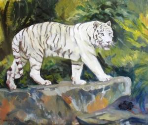 Tiger- white Siberian, 20 x 24 oil on panel, 2011