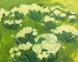 Field of Spring Jonquils 16x20 inches