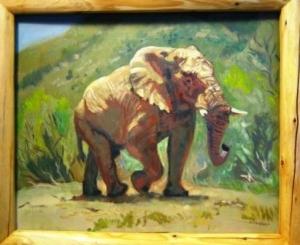 Zimbawa Elephant